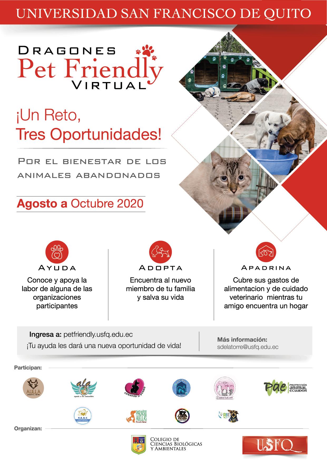 Lanzamiento Campaña Dragones Pet Friendly Virtual